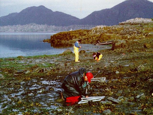 Exxon Valdez oil spill site